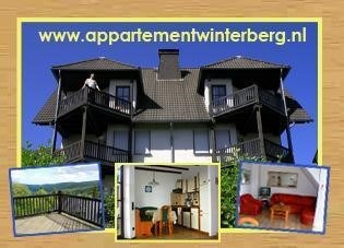Appartement WINTERBERG 6-8 pers.